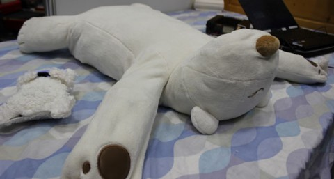 Robot teddy bear to monitor your sleep